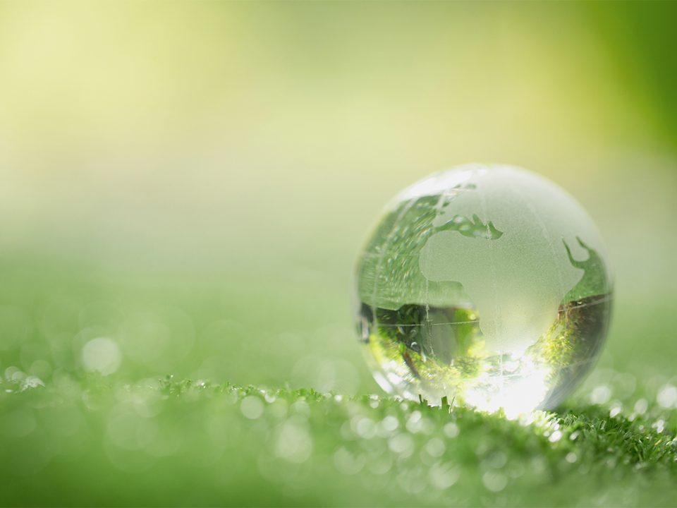 Pakistan Sustainable Business Ideas